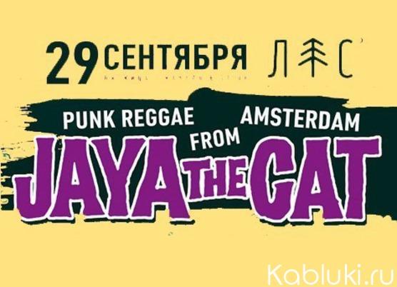 Jaya The Cat (NL)