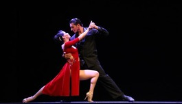 Танцевально-музыкальное шоу «В объятиях танго»